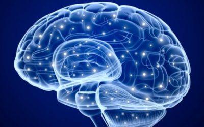 Como a terapia cognitiva pode mudar seu cérebro