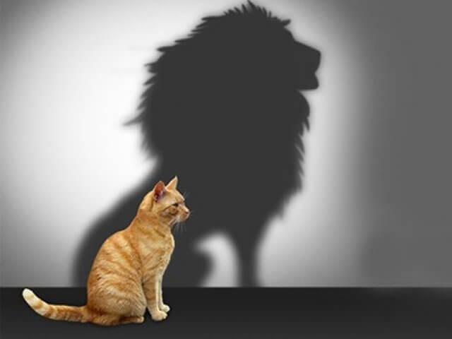 6 sinais que você tem uma personalidade forte que pode assustar algumas pessoas.
