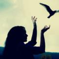 As-4-leis-do-desapego-para-a-liberação-emocional-blog-casule