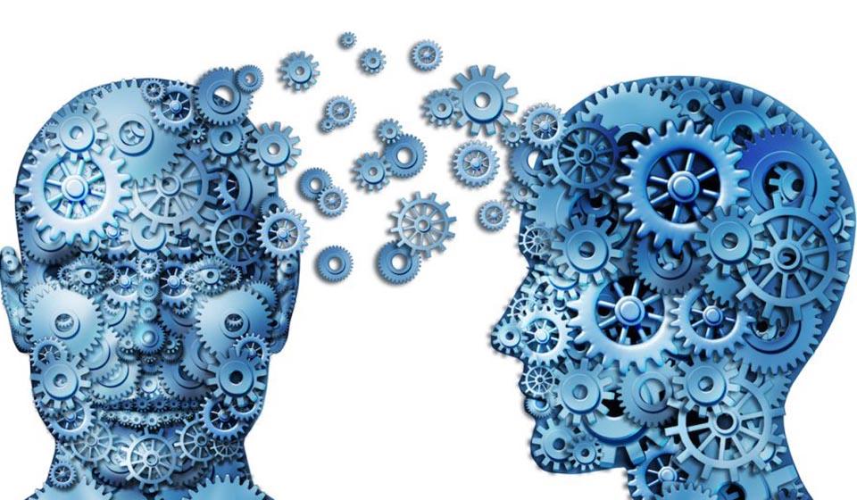 A-Psicologia-do-Comportamento-Humano-casule