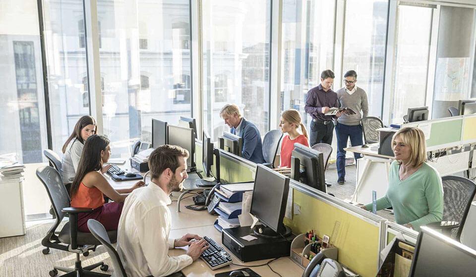 Comportamento-positivo-no-ambiente-de-trabalho - casule