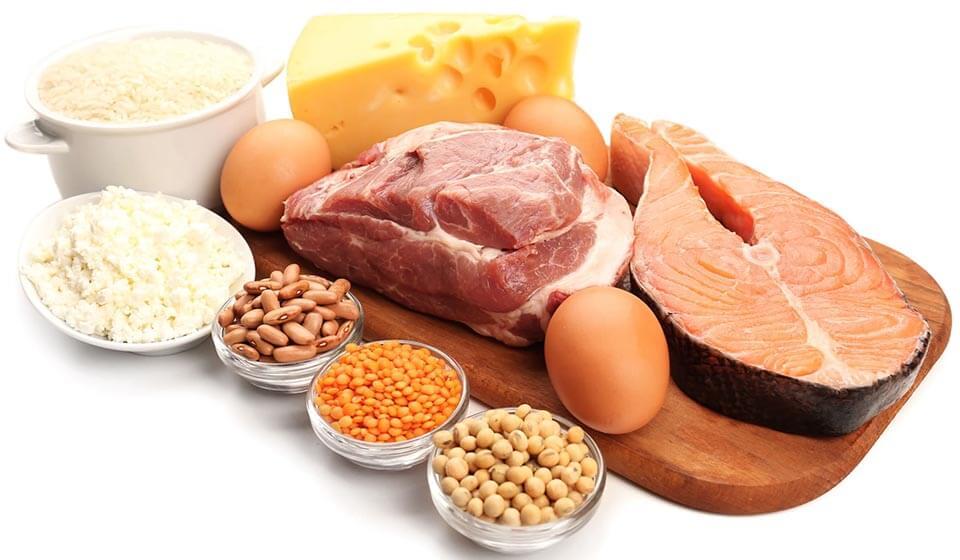 Proteínas e hipertrofia muscular - casule