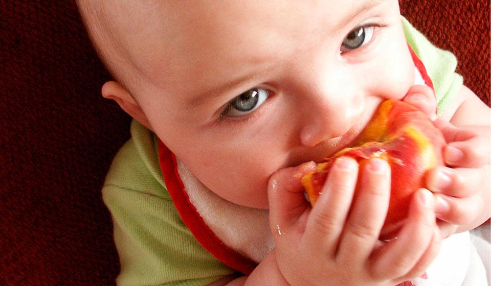A-importância-da-mastigação-na-infância-fonoaudiologia-casule