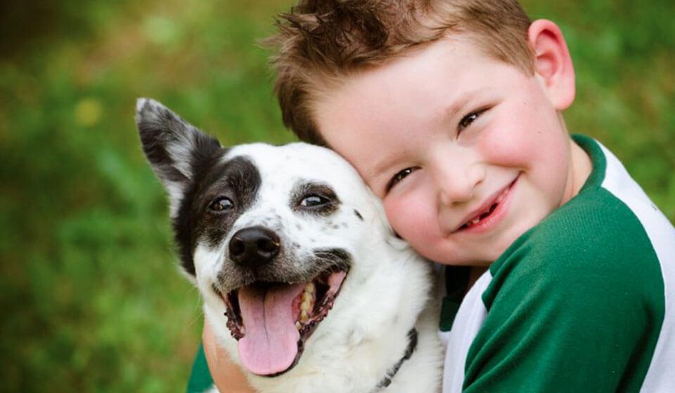 A contribuição de um pet no desenvolvimento da criança - Milena - psicóloga da Casule