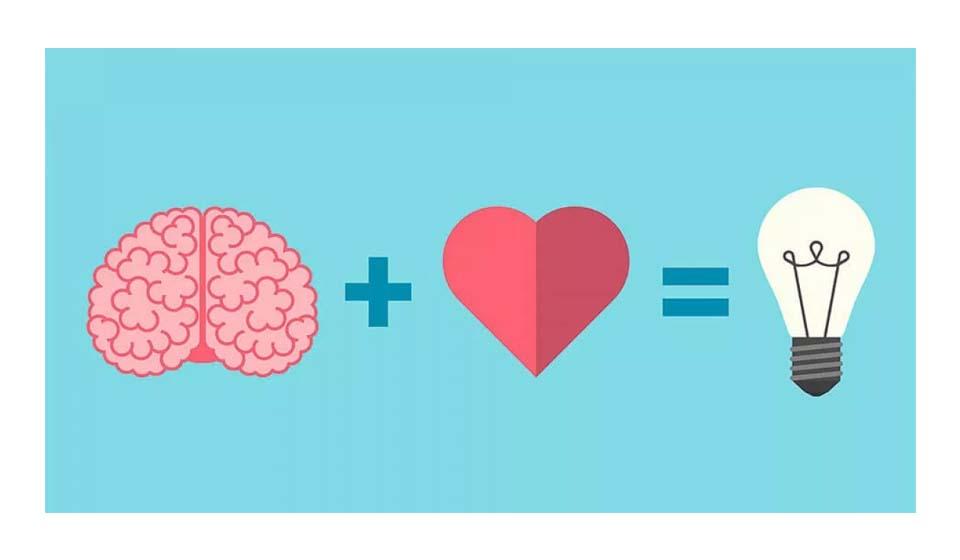 processo emocional e racional - Casule
